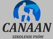 Szkoła, tresura psów Canaan - Lublin - Lublin, Krasińskiego 11