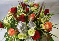 ziemia ogrodowa - Kwiaciarnia Tajemniczy Og... zdjęcie 1
