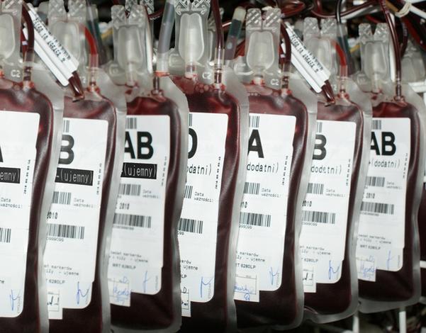 tsh - Regionalne Centrum Krwiod... zdjęcie 8