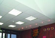 oświetlenie punktowe - Ekosystem. Materiały Budo... zdjęcie 4