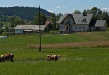 uzależnienie - Polsko-Amerykańskie Centr... zdjęcie 5
