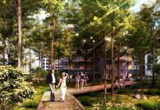 budowa - Dom Development Apartamen... zdjęcie 3