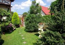 kwatery - Apartamet Gdańsk. Pokoje ... zdjęcie 1