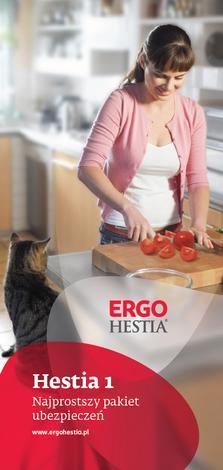 agencja - Punkt Obsługi Grupy Ergo ... zdjęcie 3