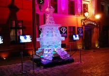 rzeźby lodowe eventy - Ice Evolution. Rzeźby Lod... zdjęcie 1