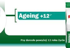 żywność dla dorosłych psów - ROYAL CANIN POLSKA sp. z ... zdjęcie 4