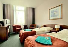 szkolenie - Hotel Gryf. Pokoje, nocle... zdjęcie 4