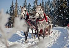wczasy w górach - Zawrat Ski Resort & SPA *... zdjęcie 17