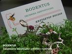 BODENTUS Technika dentystyczna Krzysztof Boczar