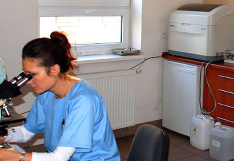 dysplazja stawów biodrowych - AS Lecznica i przychodnia... zdjęcie 2