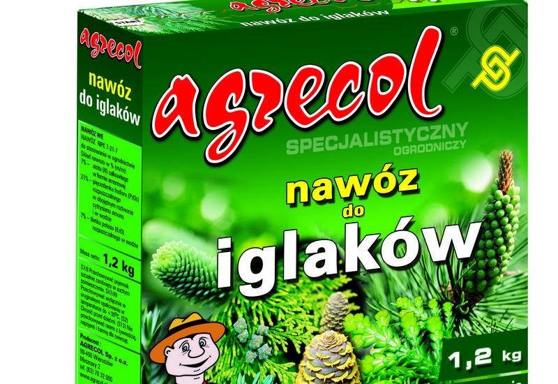 drzewka ozdobne - AMAGROL Anna Nowak - Grup... zdjęcie 1