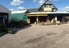 folie pryzmy - Centrum Ogrodnicze Aronia zdjęcie 7