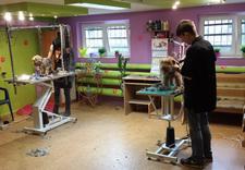 fryzjer dla psów i kotów - PSUBRATEK & SEJUTEK zdjęcie 9