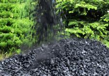 węgiel workowany - IMEX-PIECHOTA I Sp. z o.o... zdjęcie 12
