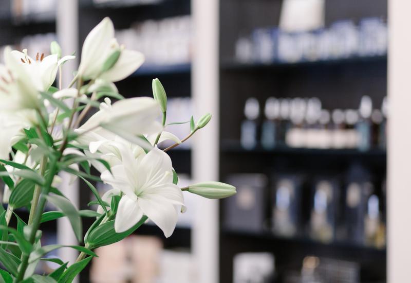 Comme des Garcons - Lulua. Perfumeria i sklep... zdjęcie 6