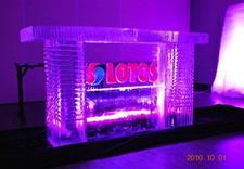kostki - Ice Evolution. Rzeźby Lod... zdjęcie 4