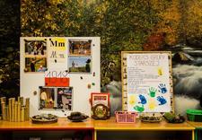 zielone przedszkole - Prywatne Przedszkole nr 1... zdjęcie 19