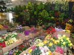 Hurtownia Kwiatów Sztucznych i Upominków Tulip