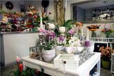 Kwiaciarnia Cztery Pory Roku Grażyna Mogielnicka
