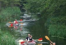spływ kajakowy Piława - Kajakarze.pl . Spływy kaj... zdjęcie 2