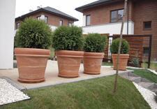 koszenie trawników - Landgreen. Projektowanie ... zdjęcie 2