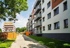 mieszkania - Tree Development Group Sp... zdjęcie 1
