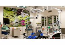 Chirurgia Plastyczna