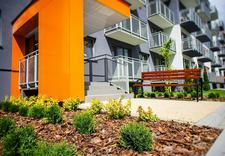 domy - Tree Development Group Sp... zdjęcie 3