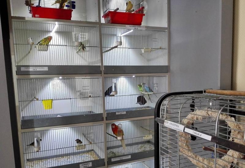 sklep zoologiczny fuma, zoologiczny