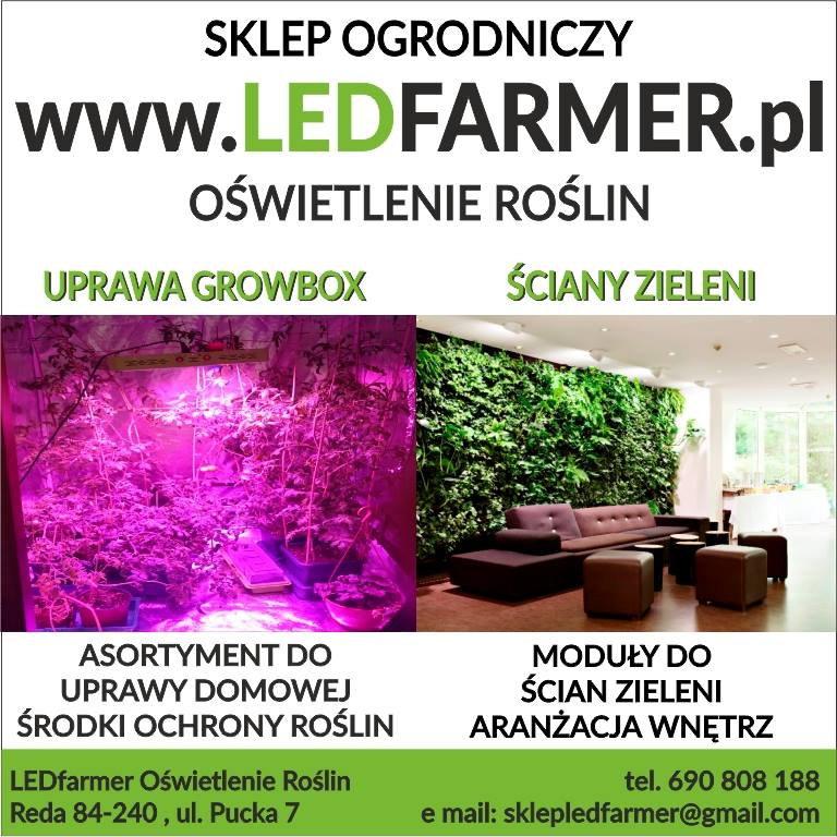Ledfarmer Oświetlenie Roślin Reda Mapa Polski W Zumipl