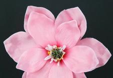 ozdoby świąteczne - Faktor - Kwiaty i Rośliny... zdjęcie 10