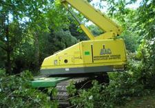 biomasa - Quercus Tomasz Sysło. Wyc... zdjęcie 8