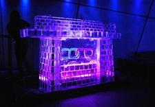 rzeźby z lodu - Ice Evolution. Rzeźby Lod... zdjęcie 3