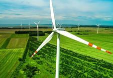 sprzedawcy energii - TAURON Polska Energia S.A... zdjęcie 8