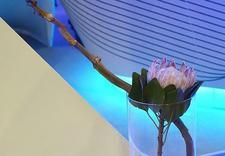 kwiaty na event - Artemi - Pracownia Florys... zdjęcie 20