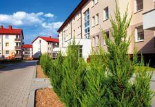 nowe mieszkania w poznaniu - Osiedle Olszynka - nowe m... zdjęcie 9