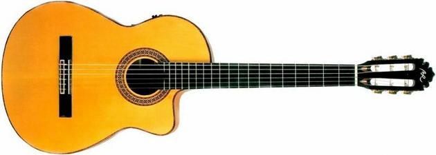 gitary akustyczne - Magnus Hurtownia muzyczna... zdjęcie 5