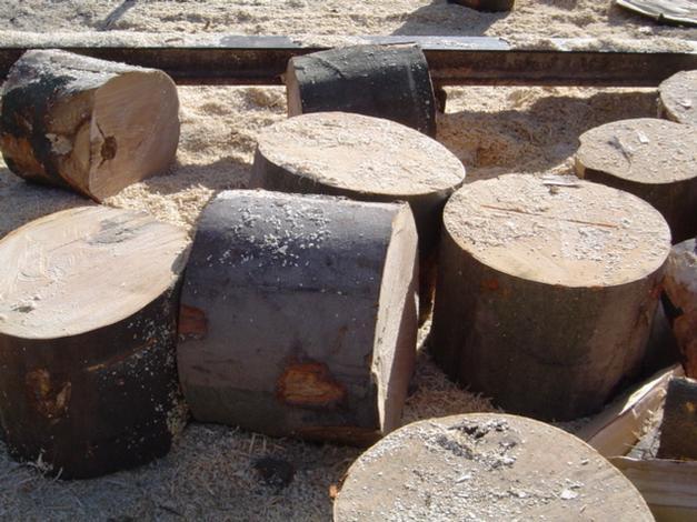 drewno opalowe - Dariusz Krzykowski. Drewn... zdjęcie 3