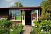 Galeria Roślin S.C. Sklep ogrodniczy, rośliny ogrodowe, drewno ogrodowe