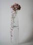 Floristica. Kwiaciarnia