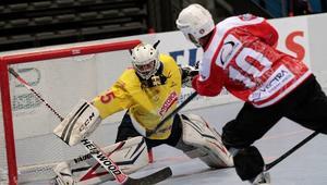 Hokej na rolka, Polska