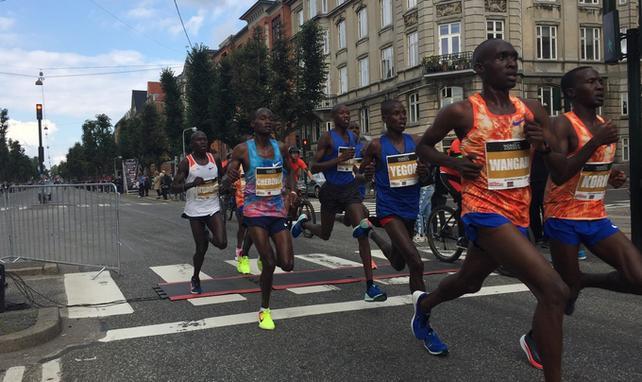 Półmaraton Kopenhaga