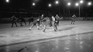 AZS Warszawa hokej na lodzie