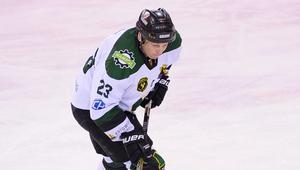 Marek Pohl