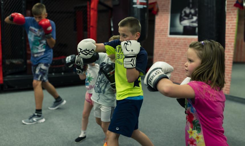 bokserzy młodzi