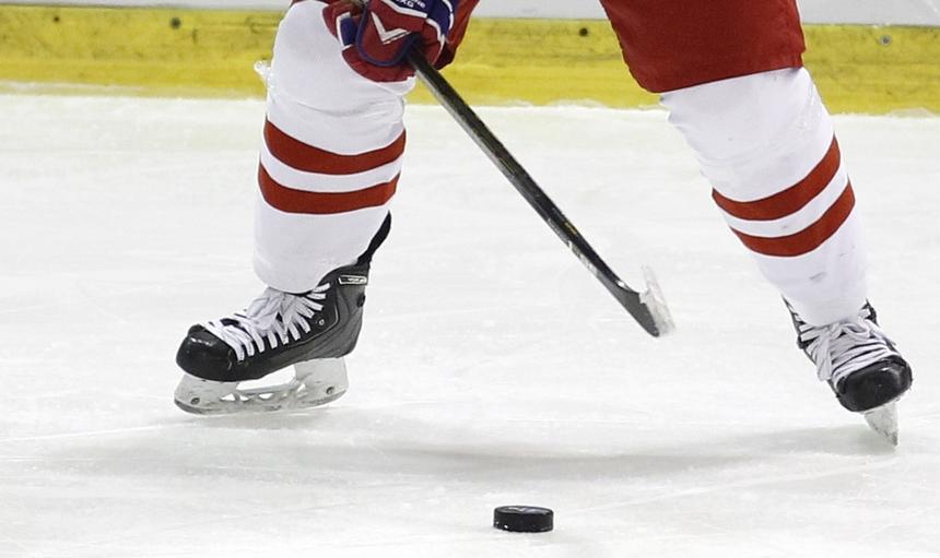 Hokej na lodzie kobiet. Mistrzostwa Swiata dywizji 1B do lat 18. Polska - Dania. 08.01.2017