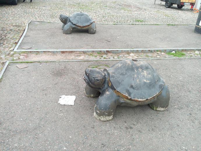 Rzeźby żółwi w centrum Helsinek – dobrze oddają naturę przeciętnego Fina.