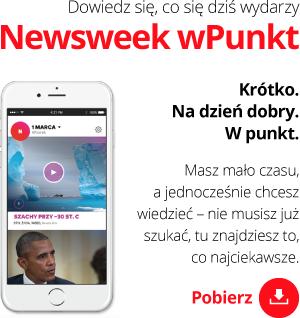 Newsweek wPunkt