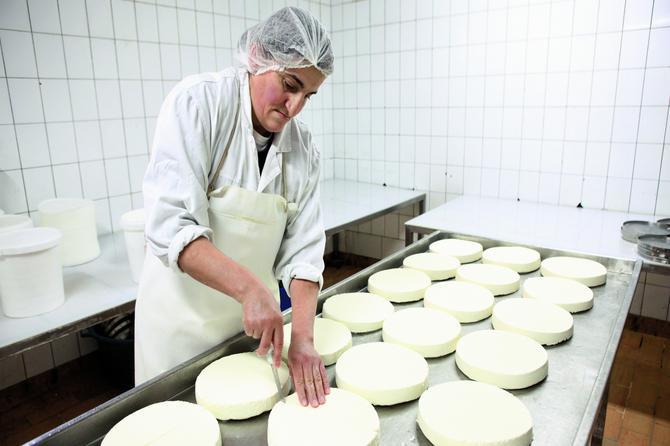 Sjenički sir nije kao drugi! A Marići čuvaju tajnu recepturu staru vekovima