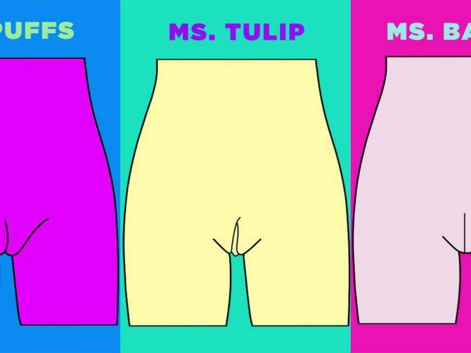 Postoji 5 tipova vagine: Proverite da li je vaša gospođica LALICA ili PUFNICA